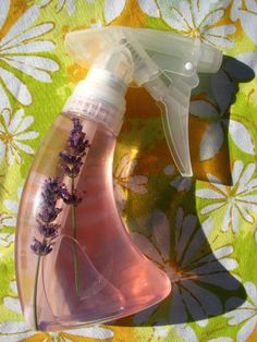 A repellent can be made by mixing 1 part essential oil with 10 parts jojoba oil, olive oil, rubbing alcohol, vodka, or witch hazel. Geranium Oil-repels mosquitoes,flies. Tea Tree-lice,ants,mosquitoes. Lavender-fleas, mosquitoes,flies,ticks,chiggers. Catnip-mosquitoes. Eucalyptus- mosquitoes. Rosemary-ticks,fleas. Lemongrass-fleas,nosquitoes,flies,ticks,chiggers. Cedarwood-Lice,Moths. Clove-mosquitoes. Peppermint- ants,lice,spiders. Citronella-mosquitoes. Patchouli-gnats. Cinnamon-ants.