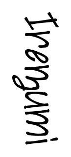 Gorgeous free handwritten font available on Fonts2u. Download Irezumi at http://www.fonts2u.com/irezumi.font