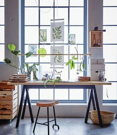 A desk in front of a window is decorated with botanical elements.