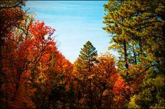 Manzano October 35 by freakinout.deviantart.com on @deviantART
