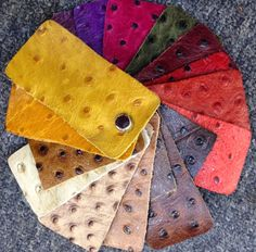 Colorful ostrich leather