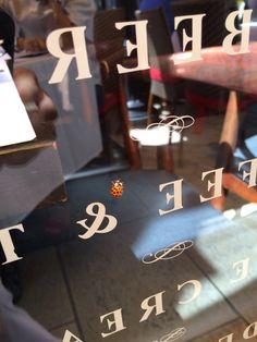 9/15Small happiness is by your side!ビバリーヒルズのお気に入りカフェRodeo208でランチを食べていたら、てんとう虫が♡なんかいいことありそう♫ 余談ですがこのカフェの斜向かいにあるUrasawaは予約が取れない店として有名なカウンター9席のみのお寿司屋さん。「あそこの予約取り消しておいて下さい」って、Rodeo208を指差してコンシェルジェに話したら「冗談でしょ⁈うちのホテルだけでも6名のキャンセル待ちがいるのに!わたしも行ったことないのに!」と興奮されてしまい、えっいつでも行けるカフェだけど、、と思っていたらコンシェルジェはUrasawaを指差したと勘違いしていた。 誤解が解けて落ち着きを取り戻した彼女は「メニューがないらしくて、シェフが決めるらしい!」とか(要はおまかせ、ってやつだよね)「一人最低550ドルのデポジット(予約時にカード支払い)が取られる」とか興奮して教えてくれました。ウラサワさん、間違いなく日本人ですよね。そんなにアメリカ人を興奮させるお店をロデオドライブに。凄いです!!