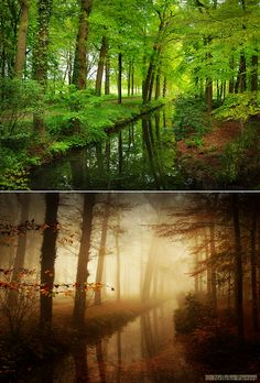 Difference Of Weather and Season by Nelleke.deviantart.com on @deviantART