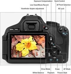 Canon EOS Rebel T3i/600D For Dummies    The Canon Rebel T3i/600D Digital Camera Layout    Exposure Mode Quick Guide for Your Canon Rebel T3i/600D Digital Camera  /END - might be a great tip for my students