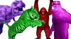 3D Animals Dance | Color Animals For Children | Tiger Vs Bear | Animals Sounds For Children Rhymes https://youtu.be/wt_mjRqQ6IM