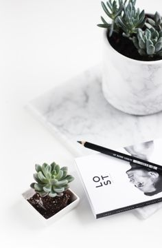marble pot and succulent Diy Marble, White Marble, Decoration Inspiration, Interior Inspiration, Life Inspiration, Design Inspiration, Scandi Living, Interior Decorating, Interior Design