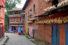 In Changu Narayan, in the eastern Kathmandu Valley of Nepal, dried corn hangs from eaves to keep it safe from rodents