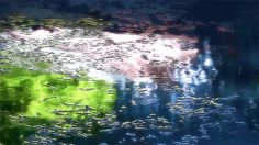 "littlelimpstiff14u2: ""The Garden of Words (言の葉の庭 Kotonoha no Niwa) is a 2013 Japanese anime film produced by CoMix Wave Films and directed by Makoto Shinkai. 65 GIFs found for kotonoha no..."