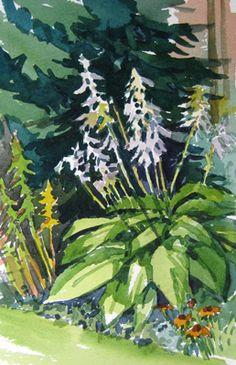 Plein air watercolor landscape painting of hostas in a garden.