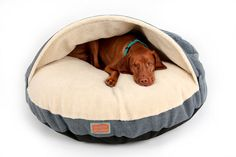 dogs cave – Animals and Pet Supplies - Garden Design - Dream House Pet Beds, Dog Bed, Doggie Beds, Sven Bender, Dog Cave, Animal Decor, Diy Stuffed Animals, Dog Leash, Dog Accessories