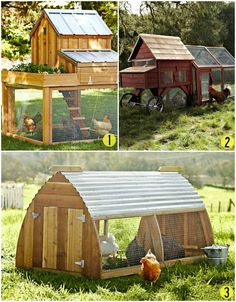 Daily Discovery: Country-Inspired Chicken Coups #chickencoop #design
