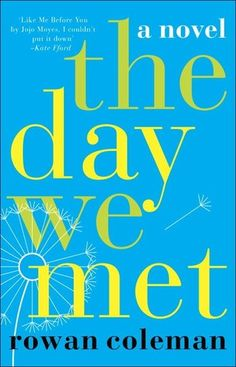 The Day We Met - New Adult Fiction