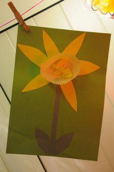 Spring- daffodil