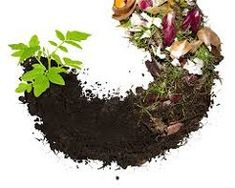 Compost biodegradable waste food-waste recycling heap of vegetables - Modern Biodegradable Products, Organic Gardening, Gardening Tips, Gardening Vegetables, Food Waste Recycling, Faire Son Compost, Composting 101, Soil Improvement, Gardens