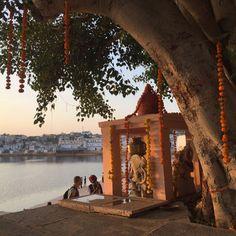 Pushkar Textilrundreise Indien Journey Pictures, Group Tours, Indian, Round Trip, Viajes