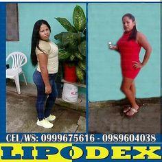 Tus medidas son 90-60-90 y tu otro brazo igual? TRANQUILO  Llegó #Lipodex la manga gástrica en cápsulas. Potente quemador de grasa 100% natural. Testimonios a diario👌💪 📱0999675616 - 0989604038 Entrega inmediata en Guayaquil y Duran Envios nacionales e internacionales #BajaDePeso #adelgazar #adelgaza #pierdepeso #Lipodex #ecuador #Guayaquil #Duran #gym #playa #playas #salinas #Sabado #Fds #montereylocals #salinaslocals- posted by Lipodex Ecuador https://www.instagram.com/lipodex_ecuador…