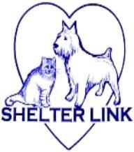 Sachem Public Library's 3rd Annual Pet Adoption Fair!  http://www.shelterlink.com/
