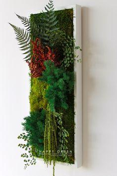 Nouveau : Le Cadre végétal HappyGreen Rectangle, dimension : 20 x 60 cm