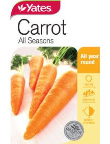 A large, superbly crunchy and vigorous variety. Rich in Vitamin A and carotene. Vegetable Garden, Carrots, Seeds, Seasons, Vegetables, Food, Vegetables Garden, Seasons Of The Year, Essen