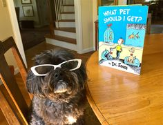 """""""What Pet Should I Get?"""" - read about the many unexpected teachable moments in this new Dr. Seuss children's book."""