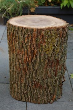 The instructions for making a side table from a stump. Have the stump, have the instructions. Doing this!