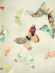 flutter blur by lush bella, via Flickr