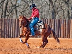Clinton Anderson: Don't Get Emotional When Training Horses