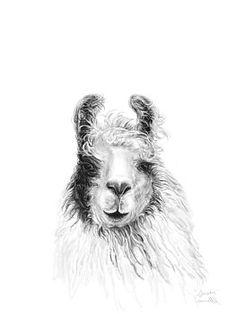 Llama Art- Susan