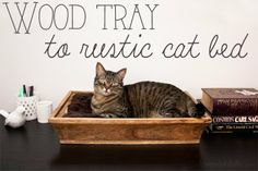 Wood tray cat bed