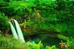 KAUAI UNDERWATER PICTURES | Kauai: Hawaiian Paradise