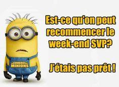 Moi non plus ! Funny Puns, Funny Quotes, Hilarious, Minions Quotes, Funny Stories, Etiquette, Cool Words, Like4like, Funny Pictures