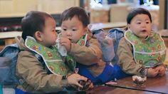 Daehan, Minguk and Manse Superman Cast, Superman Kids, Cute Kids, Cute Babies, Song Il Gook, Triplet Babies, Man Se, Song Daehan, Song Triplets