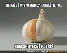 Ne každé místo, kam zapadneš, je to. More Than Words, Good Mood, Best Memes, Health And Wellness, Funny Jokes, Funny Shit, Motivation, Private Facebook, Garlic Clove