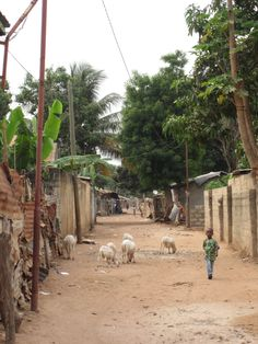 Brikama, The Gambia | via Pirkko K. - https://www.pinterest.com/pin/412572015835746906/