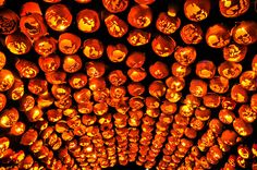 "odditiesoflife: "" The Great Jack O'Lantern Blaze Held every year in New York, the Great Jack O'Lantern Blaze is a Halloween event featuring some hand-carved, illuminated pumpkins."