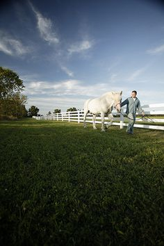 Mikie Walking Horse Along White Flex Fence from RAMM
