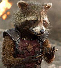 50 Best Rocket Gog Images Rocket Raccoon Guardians Of The