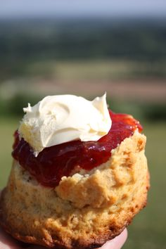 Scone, Jam and Clotted Cream a beautiful local delicacy plus a cuppa and you have a Devon cream tea :) Cornish Cream Tea, British Desserts, Clotted Cream, Food Places, Cornwall, Afternoon Tea, Scones, Holiday Recipes, Tea Time