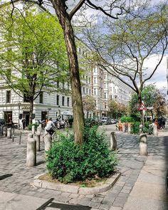 Crossing Kreuzberg #berlinberlin Berlin, Sidewalk, Plants, Instagram, Walkways, Planters, Plant, Pavement, Planting