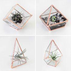 Modern Gardening: 12 DIY Terrariums You Can Keep as Home Decor