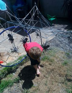 spider web fun! Eli might love this... momma will be glad they are fake!