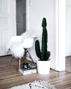 Decor Inspirations with Cactus and white fur. Check out my weekly reviews on: designdschungel.com