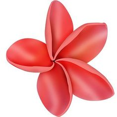 "VRS Hawaiian Hawaii Honu Turtle Plumeria Round Flower Car Decal Vinyl 6/"" Sticker"