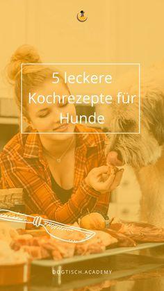 Du kochst gerne? Auch für deinen Hund? Natürlich! Dein Hund soll qualitatives Hundefutter bekommen,, damit er gesund alt wird.  Paulina, unsere Hundeernährungsexpertin zeigt dir 5 leckere Gerichte für den Hund, die ihn mit all den wichtigen Nährstoffen versorgen und welche  sich wohltuend auf den Magen-Darm-Trakt auswirken. Tricks, Blog, Movies, Movie Posters, Dog Food, Natural Medicine, Delicious Dishes, Safety, Films