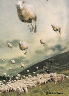 ART - SURREALISM  -  SHEEP (Surrealisme) Sheep, Wallpaper, Painting, Art, Collages, Pictures, Wallpaper Desktop, Kunst, Gcse Art