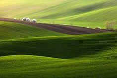 Image result for moravian fields czech republic