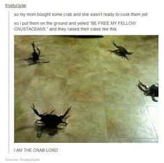 THE CRAB LORD