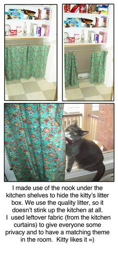 Curtains Ideas cat curtains kitchen : Unique Cat Furniture | ... With Custom Blinged Out Computer ...