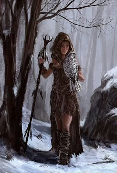Snow druid falconer                                                       …