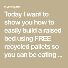 Today I want to show you how to easily build a raised bed using FREE recycled pallets so you can be eating fresh veggies without breaking the bank. Thanks f... Recycled Pallets, Raised Beds, Fence, Recycling, Veggies, Backyard, Gardening, Fresh, Vegetable Recipes